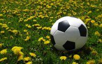 Weiterlesen: Gute Aussichten für die Frühjahrsaison